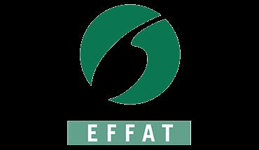 article-effat.png